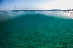Blick unter die Wasseroberfläche