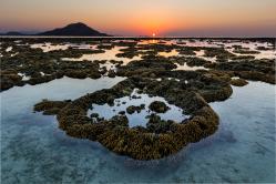 Sonnenuntergang über einem Korallenriff
