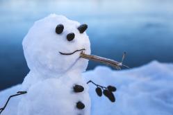 The little Snowman