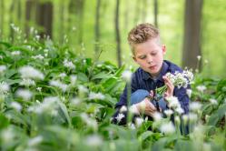 urter i børnehøjde