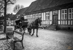 Hest og vogn