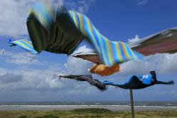 Windspiele am Meer