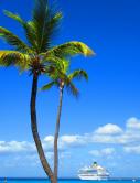 Karibische Sehnsucht