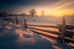 Východ slunce v pastvinách