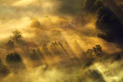 Domki we mgle