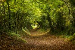 Halnaker Tunnel