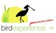 Pannonian birdexperience