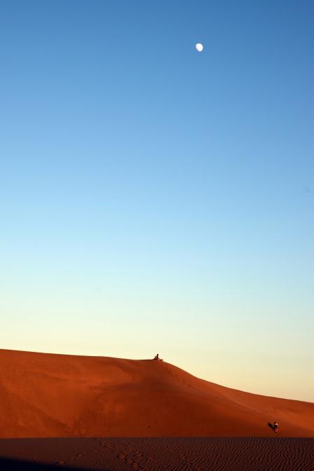 Entspannung auf den Dünen