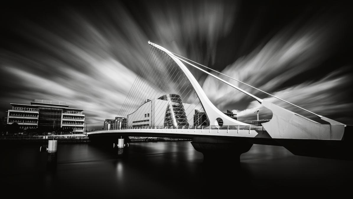 Dublins Harve