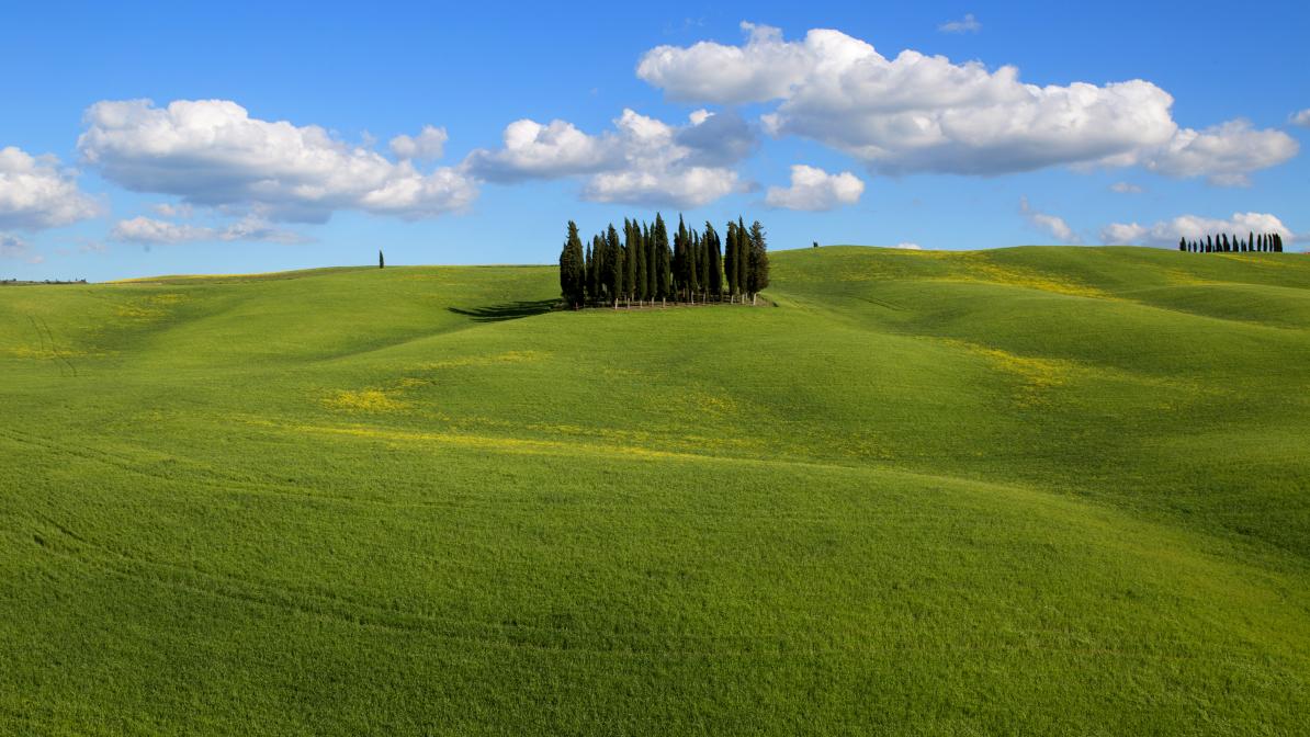 Wiosna w Toskanii