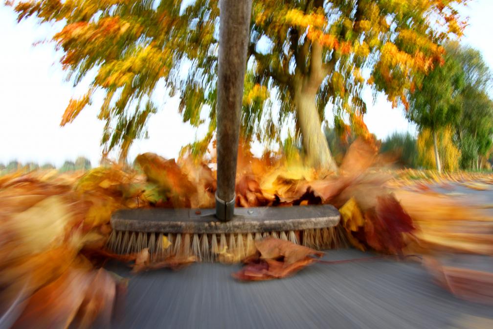 Herbstliche Arbeiten