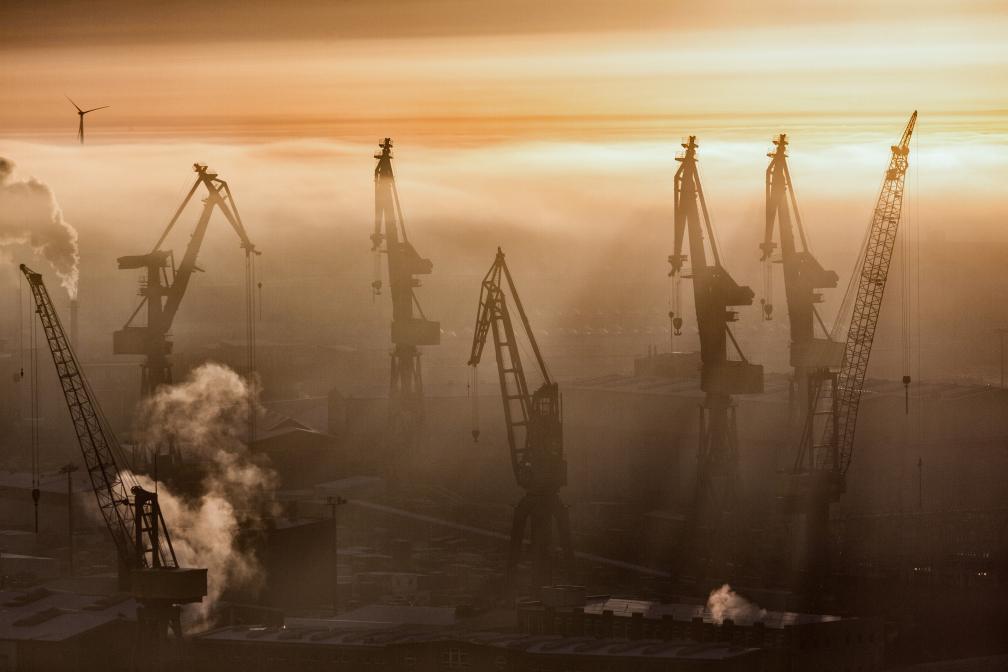 Kräne im Nebel