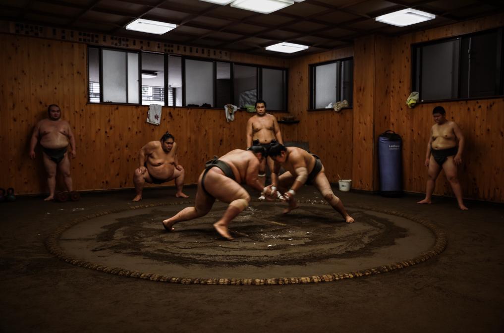 Sumo Training