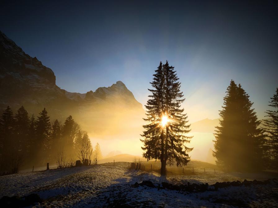 Sonnenuntergang an der Nebelgrenze