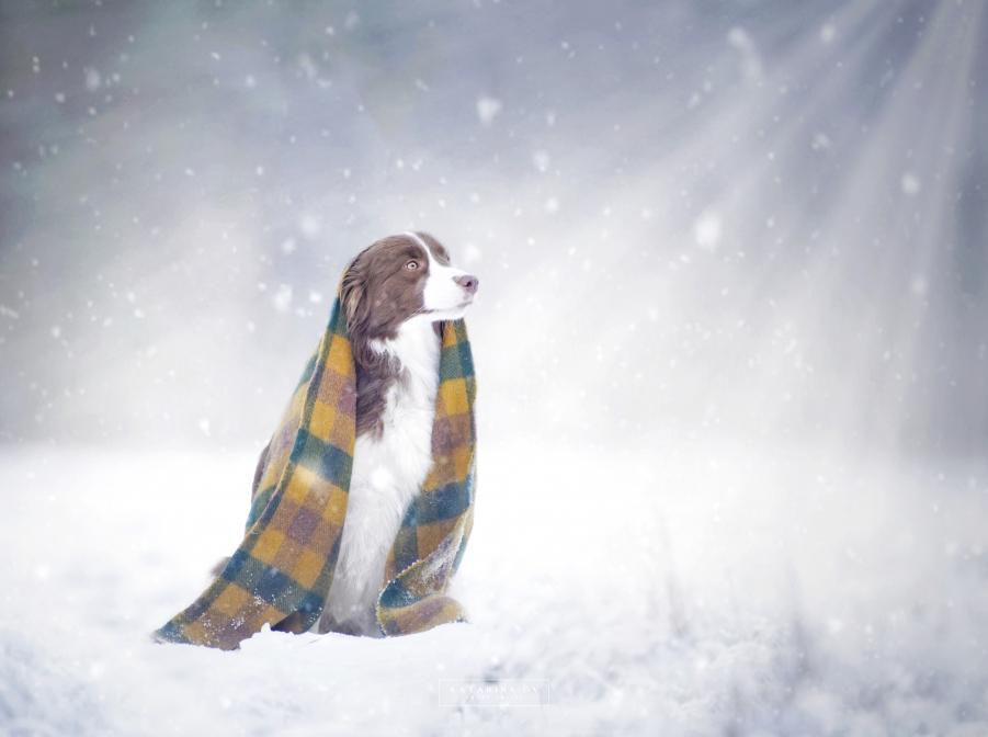 Snežík a Tina :)